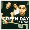 kiwi_green_day
